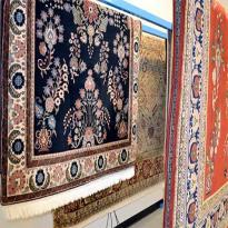 Animal Skin rug cleaning